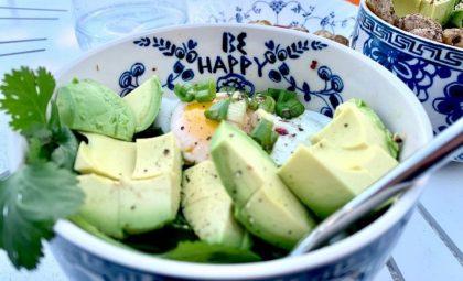 Asian avocado – volgens japanners de boter van het bos