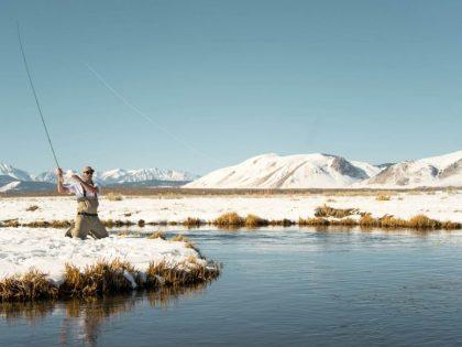 Gravad lax en de conserveertechniek van nordic vissers