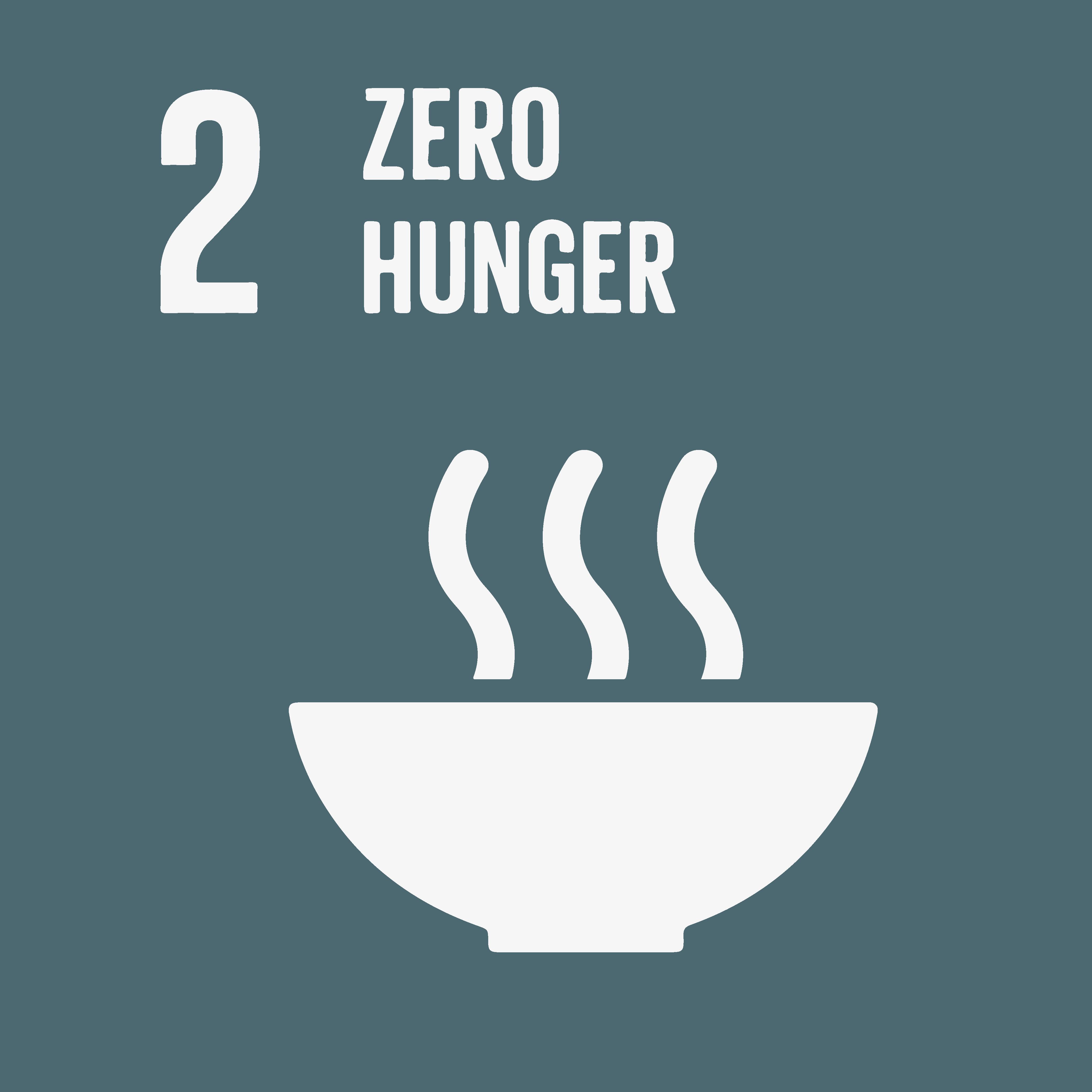 sociaal ondernemen UN zero hunger