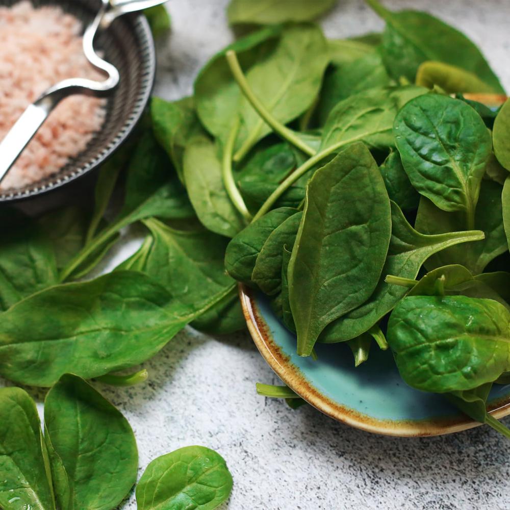 plant-based broodje